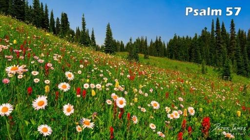 Psalms: Psalm 57