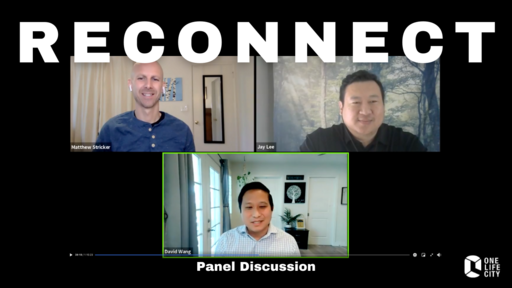 Reconnect Panel