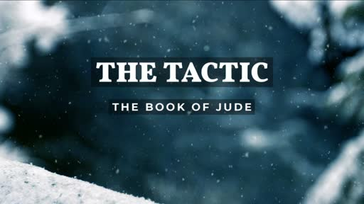 The Tactic (Video)