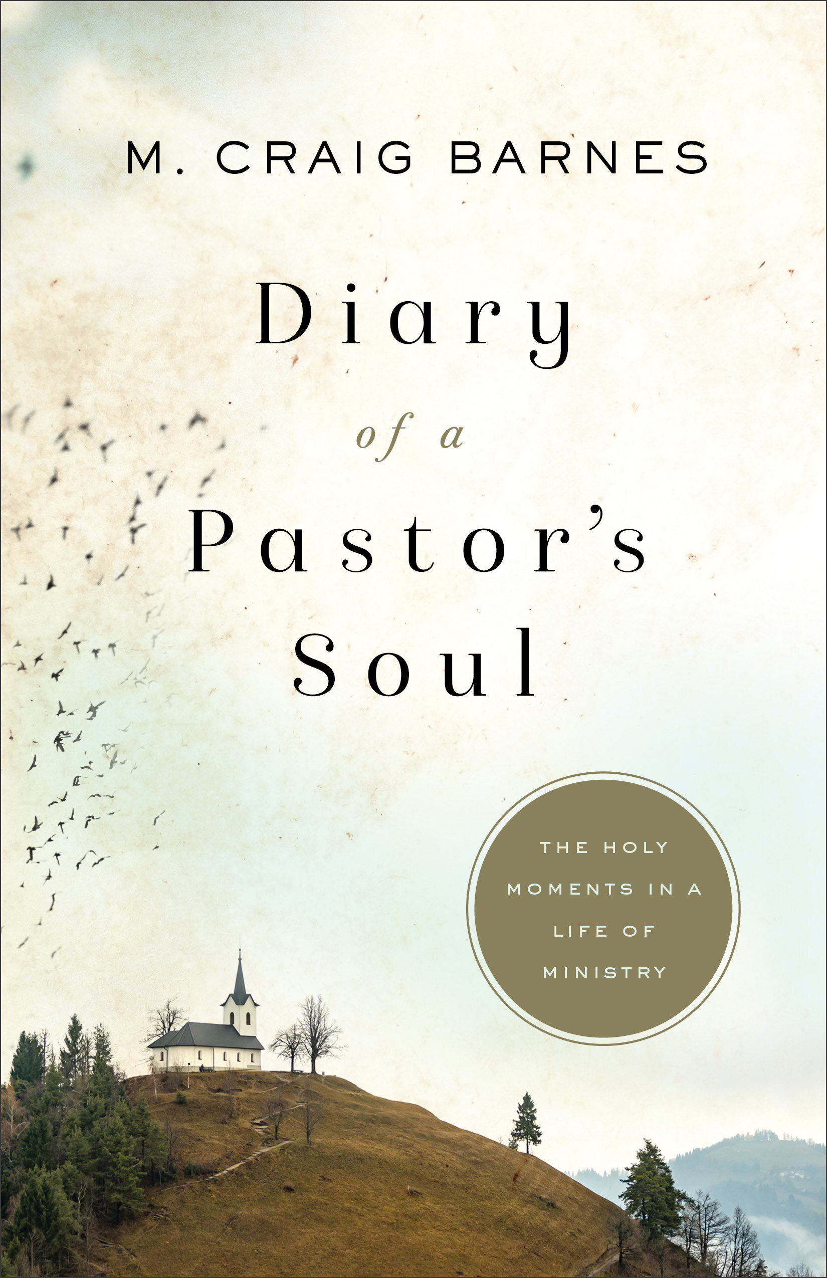 Diary of a Pastor's Soul: The Holy Moments in a Life of Ministry