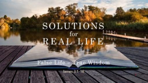 False Life -- True Wisdom