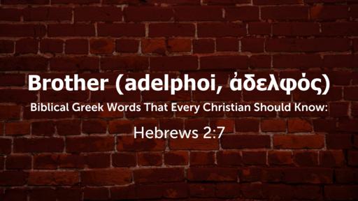 ADELPHOS (adelphoi)
