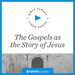 Bible Survey Video Series: The Gospels as the Story of Jesus