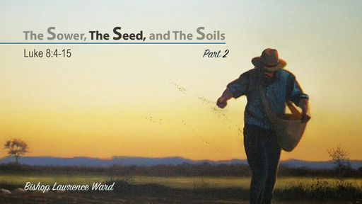 The Sower, The Seed, and The Soils - part 2
