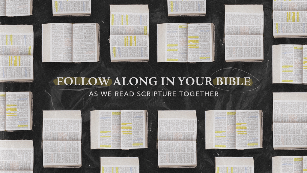 Follow Along In Your Bible large preview