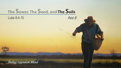 The Sower, The Seed, and The Soils - part 3