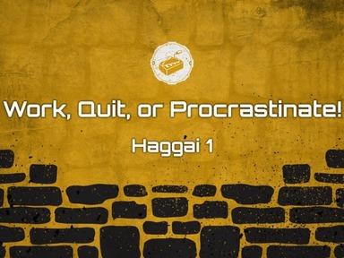 Work, Quit, or Procrastinate!