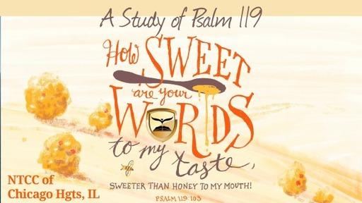 Bible Study Psalm 119 Part 6 2021.03.02