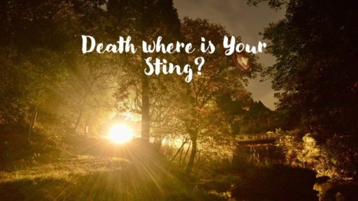 Death Where is Your Sting?