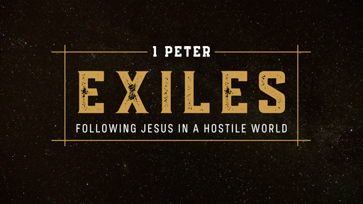 1 Peter 2:13-3:7