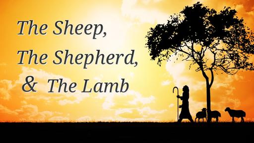 The Sheep, The Shepherd & the Lamb