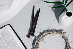 Crown of Thorns with Nails and Bible  image 1