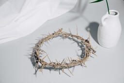 Crown of Thorns with Palm Branch  image 1