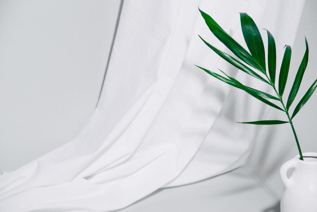 Palm Branch large preview