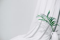 Palm Branch in Vase  image 4