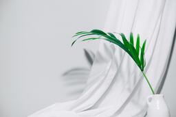 Palm Branch in Vase  image 2