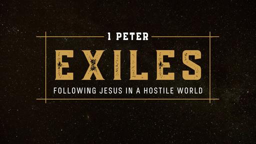 1 Peter 3:8-4:6