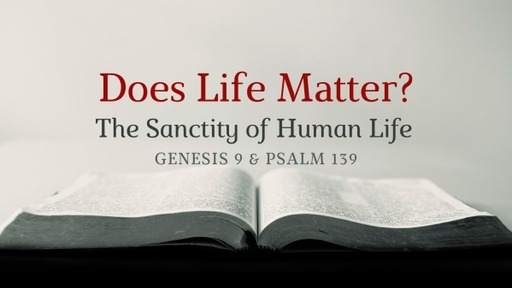 Does Life Matter?