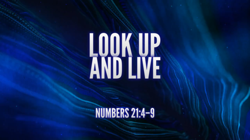 03.14.2021 - Look Up And Live