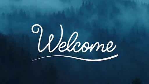 Foggy Woods - Welcome