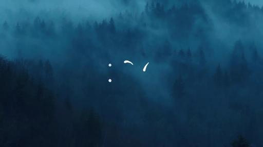 Foggy Woods - Countdown 1 min