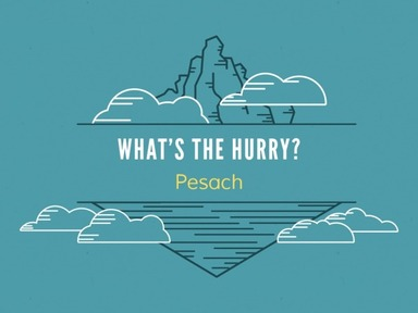 Pesach (What's the Hurry?)