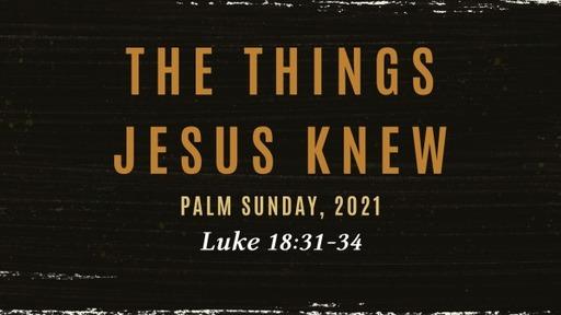 The Things Jesus Knew: Palm Sunday