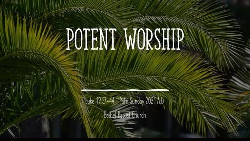 Luke 19:37-44 - Potent Worship