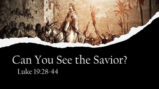 Can You See the Savior?