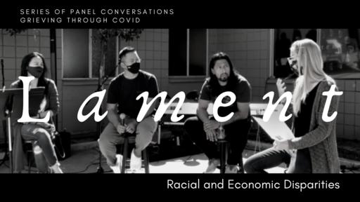 Racial and Economic Disparities Panel