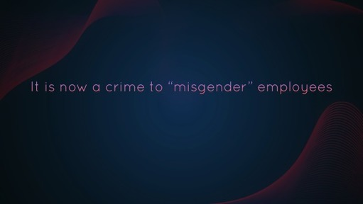 """It is now a crime to """"misgender"""" employees"""