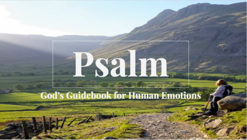 God's Guidebook for Man's Emotions: Exposition of Psalm