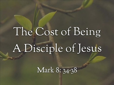 Watch for ApostyThe Cost of Being a Disciple of  Jesus