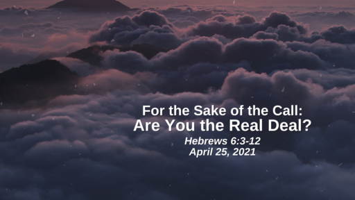 For the Sake of the Call: Are You the Real Deal? - Hebrews 6:3-12