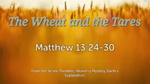The Wheat and the Tares - Matthew 3:24-30