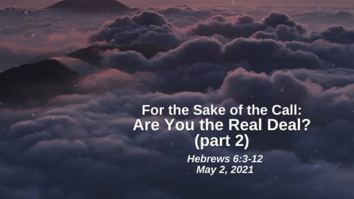 For the Saker of the Call: 28. Are You the Real Deal? (part 2) - Hebrews 6:3-12