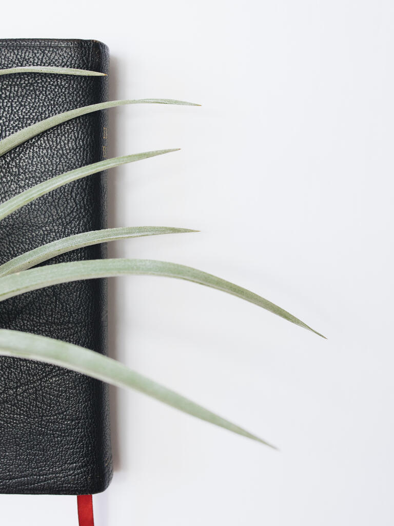 Bible with Greenery large preview
