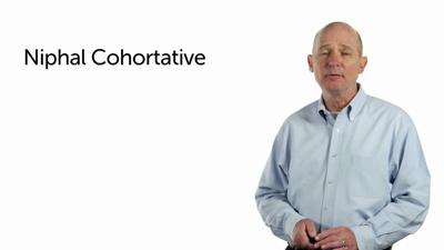 Niphal Cohortative, Jussive, and WCI