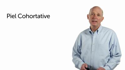 Piel Cohortative and WCI