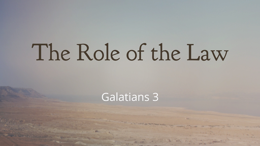 The Role of the Law