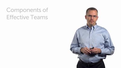 Components of Effective Teams