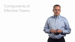 Components of Effective Teams