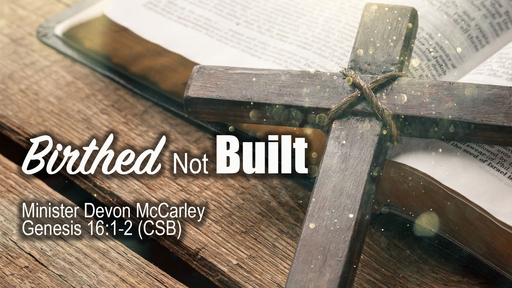 Birthed Not Built