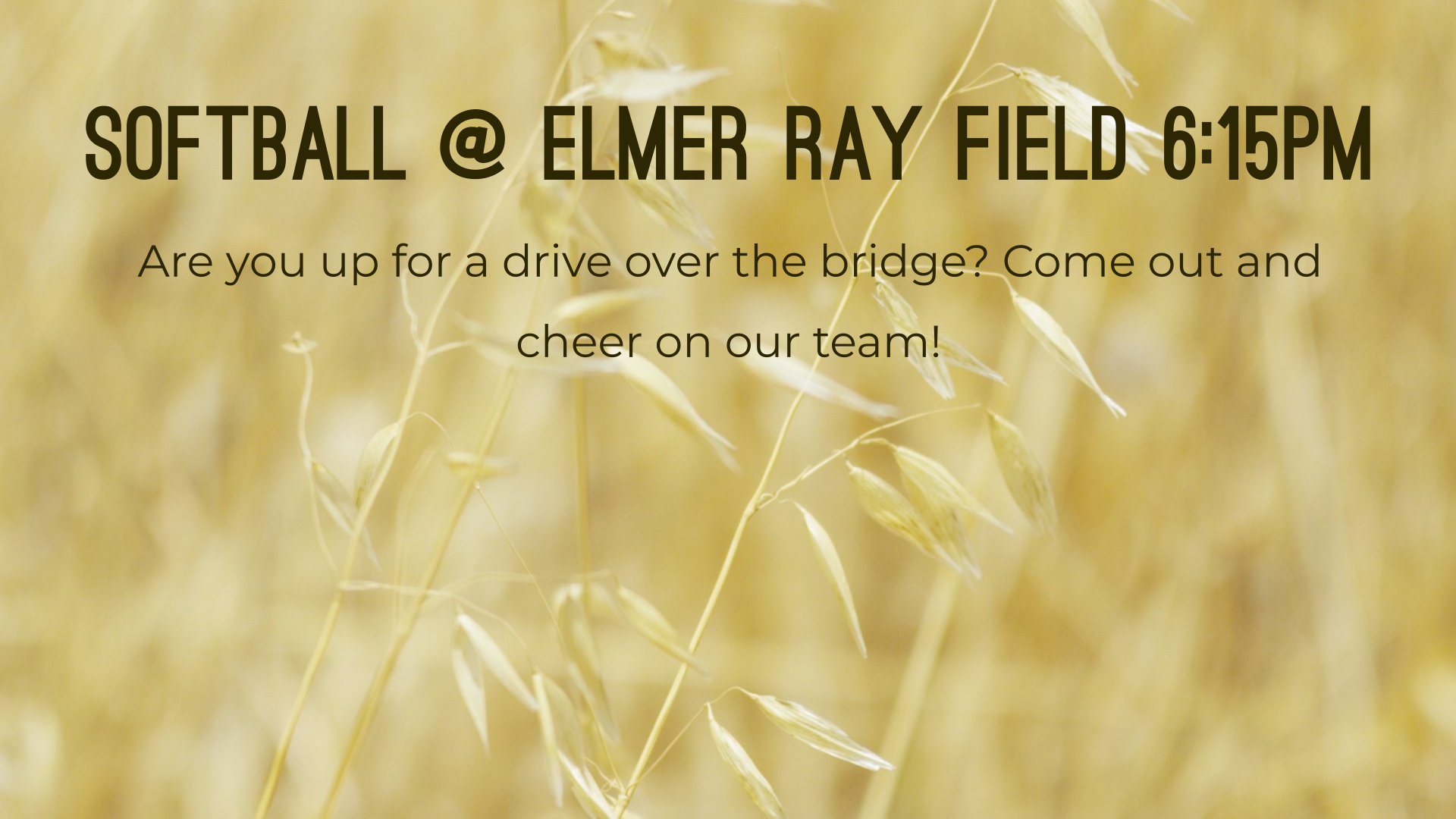 Softball @ Elmer Ray Field 6:15pm