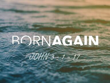 Born to be wild…born again for eternity