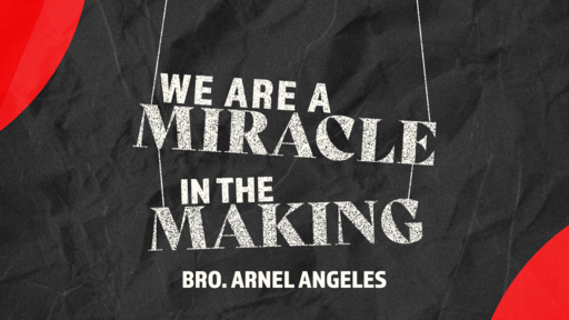We are a Miracle in the Making