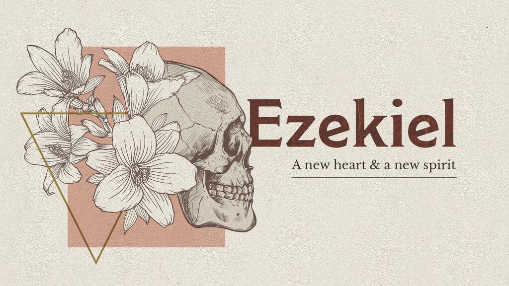 Ezekiel Skull large preview