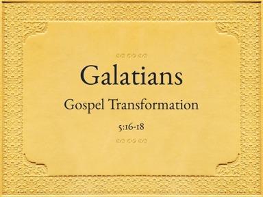 Galatians (22)