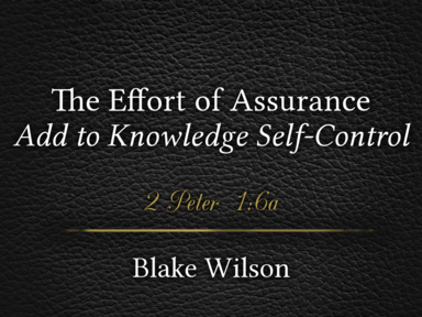 The Effort of Assurance: Add to Knowledge Self-Control