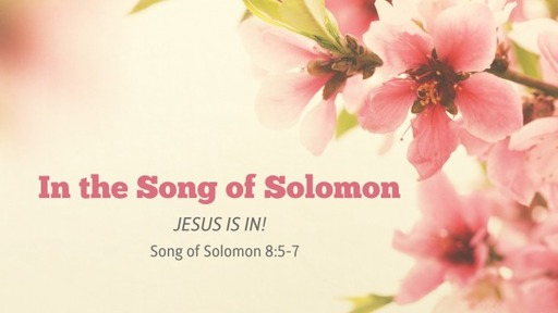 In the Song of Solomon